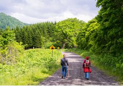 Walking in Shikotsu Toya National Park
