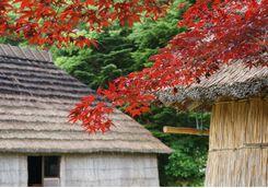 Ainu Museum