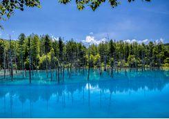 Beautiful blue Biei Lake