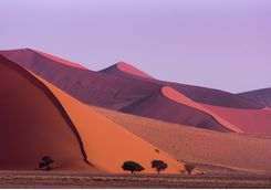 The sossusvlei dunes