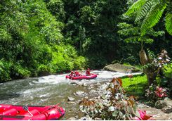Rafting in the jungle in Bali