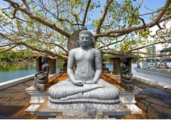 A buddha statue in Colombo