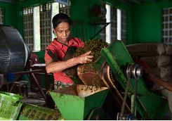 A tea factory in Sri Lanka