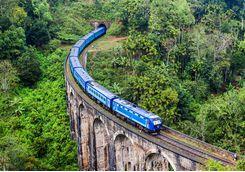 Train going through the tea hills