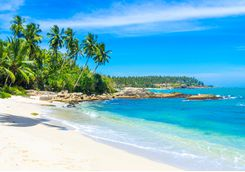 Beach in Sri Lanka's South