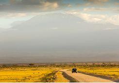 Road by Kilimanjaro