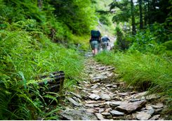 hikers hiking uphill on trail in the smoky mountains