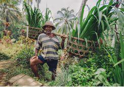balinese_farmer