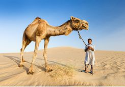bedouin_boy_with_camel
