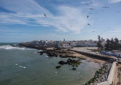 View of the harbour of Essaouira
