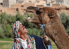 Moroccan man smiling with camel