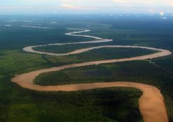Meanders of the Danum river