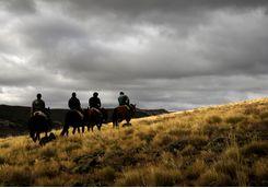 Horse trekking in the wilderness