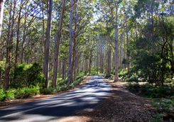 Roads in Margaret River