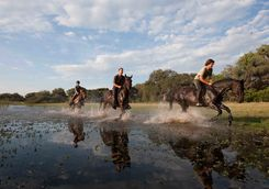 Cantering through floodplains