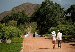 Persons having a walk through the grounds
