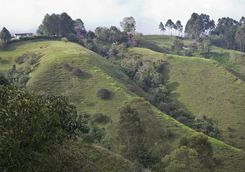 The green hills of Armenia