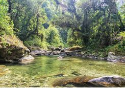 Lagoon in Tayrona National Park