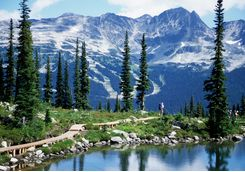 Snowy mountains in Whistler