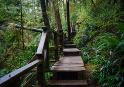 Ucuelet stairs on Vancouver Island