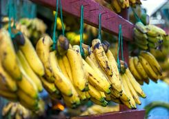 Banana's in the market