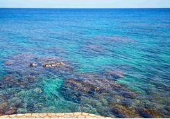 Snorkelling at GoldenEye