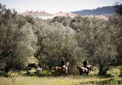 Horse riding in the Alentejo