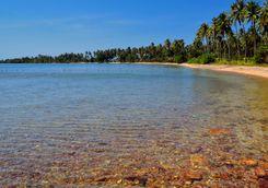 A beach on Rabbit Island