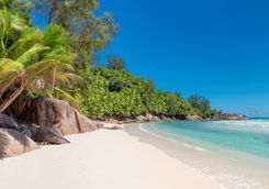 a typical white sandy beach in the Seychelles