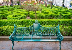 a colourful park bench in a city garden