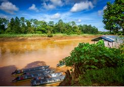 Riverbank in Borneo