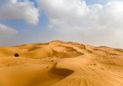 The Omani desert