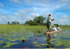 A Mokoro Canoe