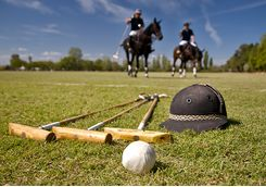 polo playing