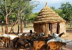 Kalahari village