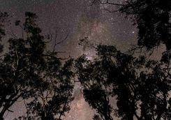 Starry sky in the Blue Mountains