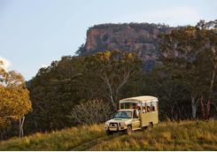 Wolgan Valley wildlife safari