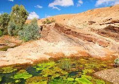 Flinders Range Gorge