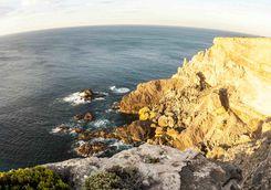 Flinders Chase Coast