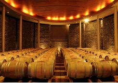 Barrels in a Winery