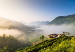Chiang Rai panoramic sunrise views