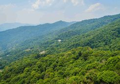 Doi Suthep highlands