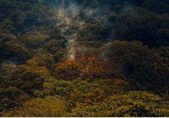 fumes rincon de la vieja national park