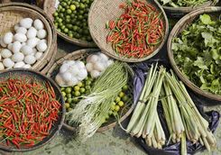 Vietnamese ingredients