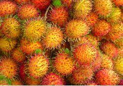 rambutans fruit in a market