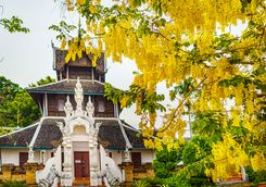 Wat Chedi Luang temple in Autumn