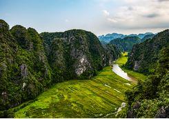 Ning Binh ricefields