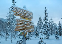 frosted sign