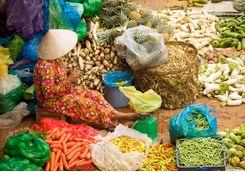 Hanoi woman