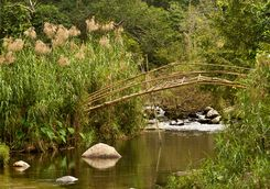 Bamboo bridge, Bolaven Plateau